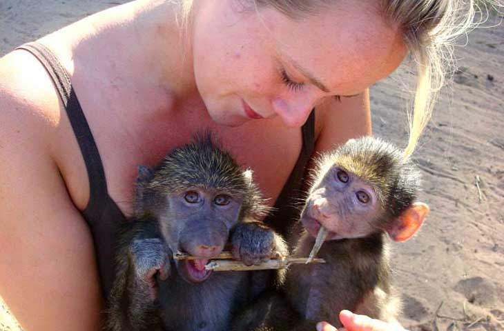Image - World of Wildlife Fund hires Zoology Alumna to protect endangered Bonobo